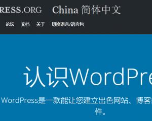 完整的WordPress建站教程演示