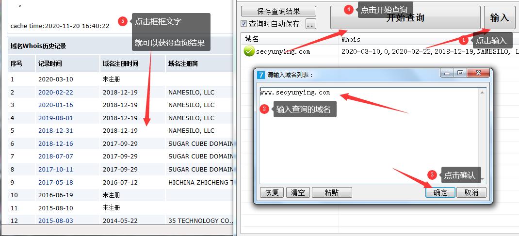 域名历史查询软件界面